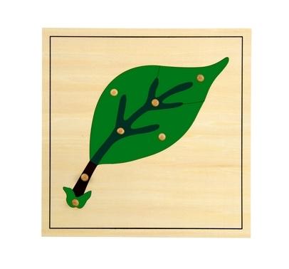Puzzle de la Hoja - Material Montessori- vista frontal