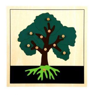 Puzzle de las Partes del Árbol - Material Montessori- vista frontal
