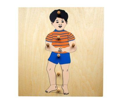 Puzzle del Niño - Material Montessori-vista frontal
