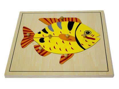 Puzzle del Pez - Material Montessori-vista frontal
